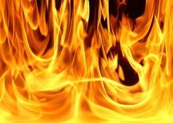 В Запорожье пожарные тушили камыш
