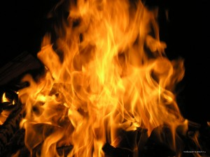 В Васильевском районе сгорела постройка