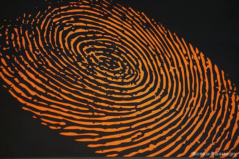 Казаху англичане отказали в визе из-за плохих отпечатков пальцев не существующих рук.