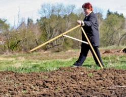 В Бердянске прокуроры не согласны с незаконной приватизацией земли