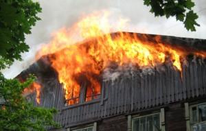 В Запорожье горел дачный кооператив