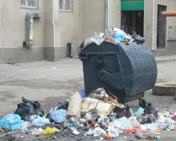 В Одесской области убитую женщину выбросили в мусорник