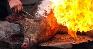 На Одесщине мужчина вместо свиньи обсмалил себя