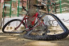 В Запорожской области погиб велосипедист