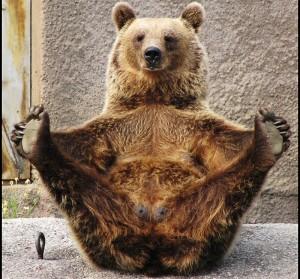 Суровые челябинские мужики с бодуна отметелили польского медведя