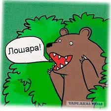 В Бердянске задержан вор-дебил