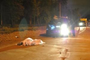 Страйк дорожного боулинга в Кривом Роге: пятеро пешеходов сбиты, один - насмерть