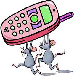 krazja-mobilnih-telefonov