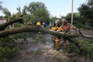 Запорожские спасатели убирали сваленные деревья