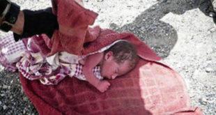 Убийство младенца в Приморске: новые подробности