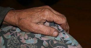 В Запорожской области убили 80-летнюю старушку