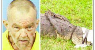 darvin-i-krokodil
